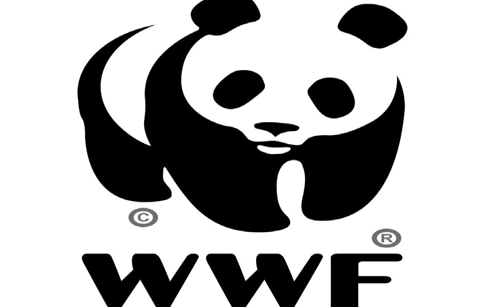 WWF-Australia Launches Blockchain Platform to Track Lifecycle of Food Items