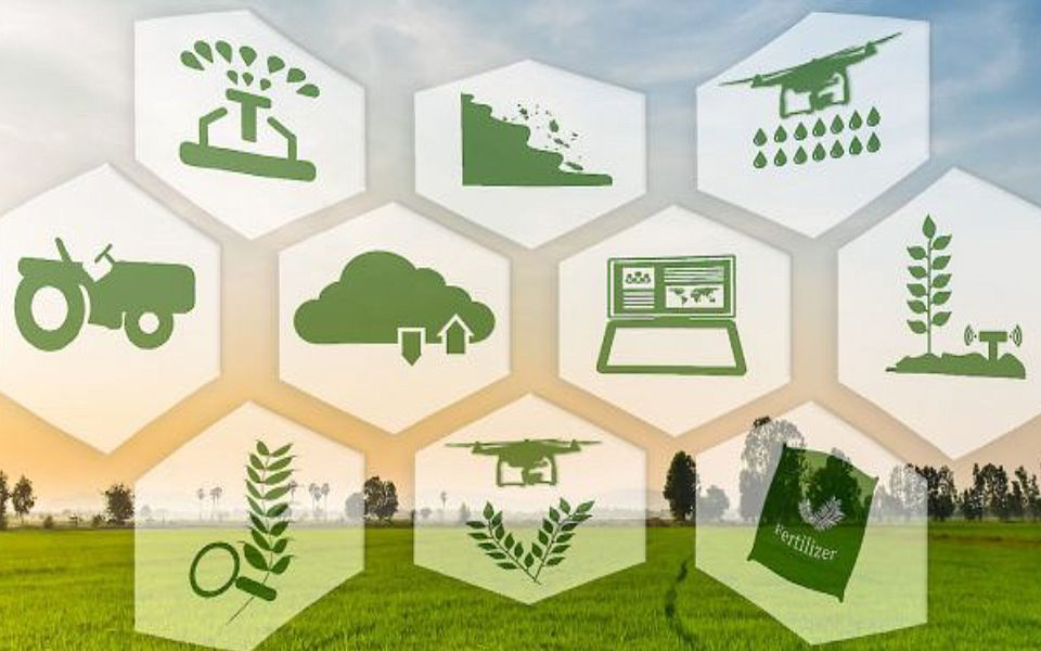The Rising Trend of Blockchain Technology Implementation in Agriculture