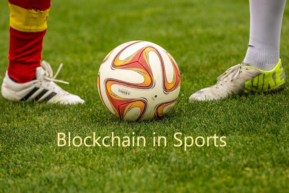 sports embracing the crypto world