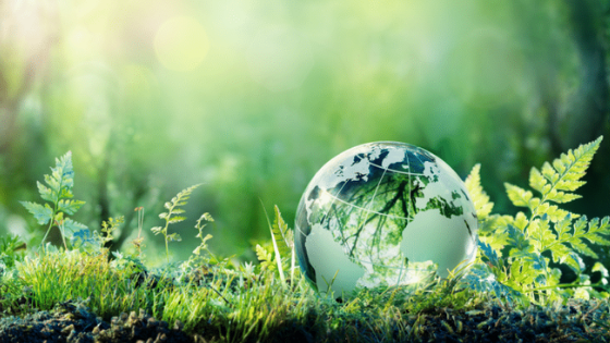 Blockchain for the Environment: It's Real and It's Here