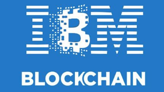ibm blockchain network