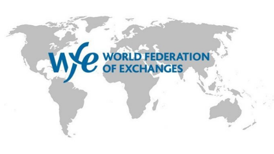 World Federation of Exchanges says crypto terminology needs clarity